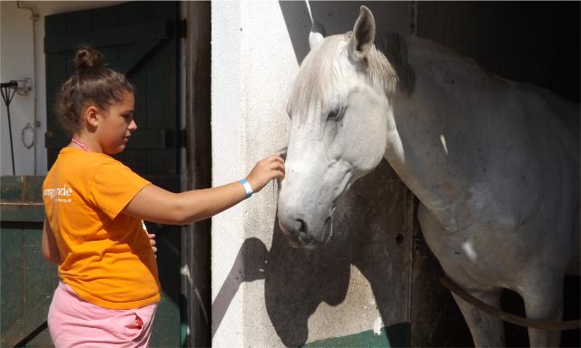 Porta-Aberta-verão-Clube-júnior-cavalos